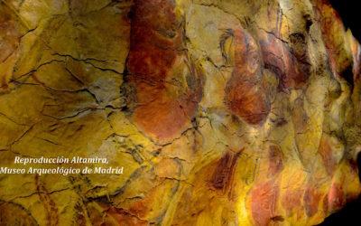 LA PREHISTORIA EN ESPAÑA, un viaje arqueológico